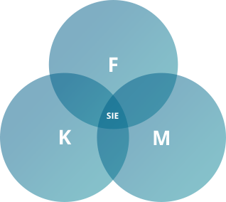 FMK Philosophie Lifecycle